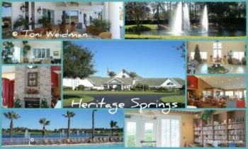 Looking For A Home In Trinity FL