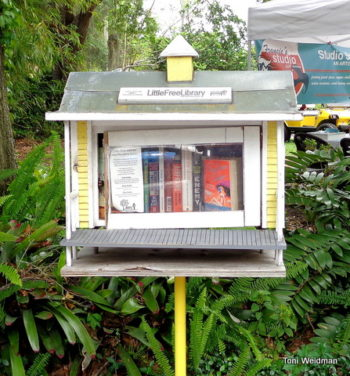 Little Free Libraries In Pasco Parks