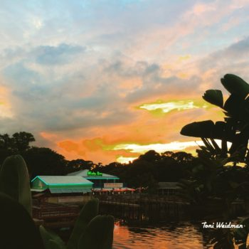 Sunset Over Whiskey River-Port Richey