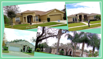 Southern Oaks New Port Richey Home Sales