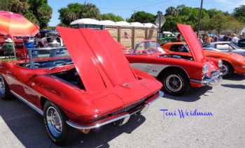 Havertys Cruise In For Cancer Port Richey.