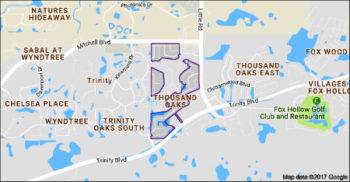 Thousand Oaks Sold Homes 2016-2017-Trinity FL