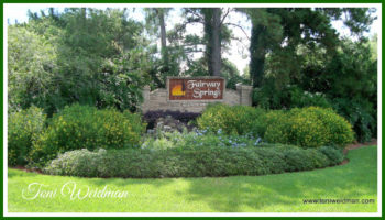 Fairway Springs Home Sales Jan-March 2017 -New Port Richey FL