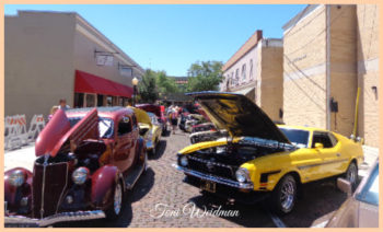 Car Show For Cancer 2017-Tarpon Springs